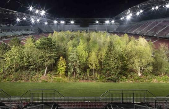 Pyll në mes të stadiumit - mesazh sensibilizues për mbrojtjen e mjedisit