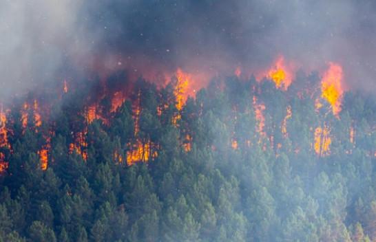 IKSHPK apel qytetarëve për ruajtjen e mjedisit: Zjarrëvenia vret!