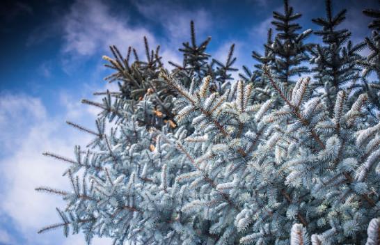 Paralajmërojnë meteorologët, tetori dhe nëntori i ftohtë, dhjetori më i nxehtë