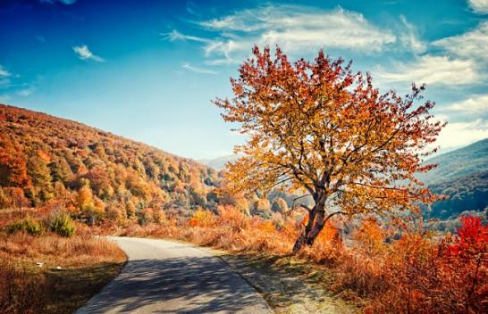 Ngritën temperaturat në vjeshtë, ky është moti në Maqedoninë Veriore