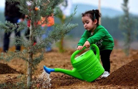 Turqia thyen rekordin botëror për mbjelljen e fidanëve për 1 orë