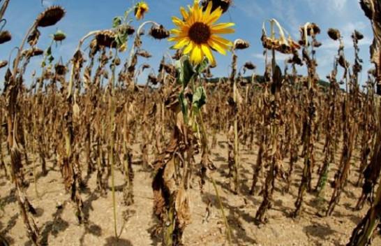 Raporti i ri zbulon se BE nuk po arrin të përmbushë angazhimet për ndryshimet klimatike