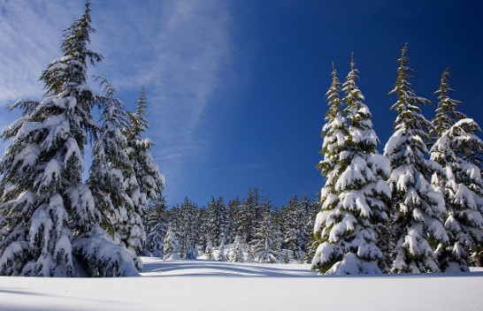 Ruajtja e shëndetit gjatë stinës së dimrit
