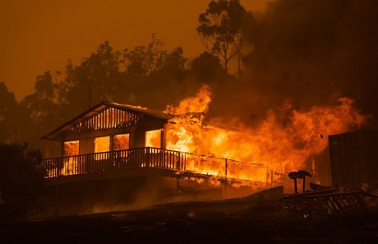 Pamje apokaliptike/ Australia nën flakë [Foto]