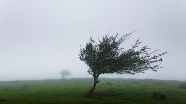 Stuhi të forta kanë përfshirë komunën e Junikut