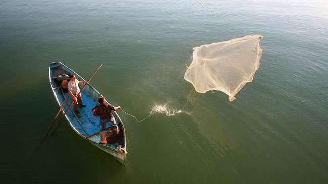 Peshkimi i qëndrueshëm merr një shtysë të fortë në Mesdhe dhe Detin e Zi