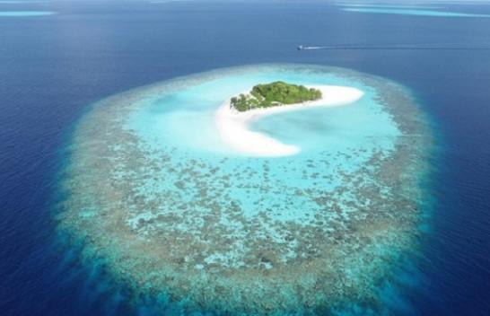 Ishujt koralorë ngrihen në nivel së bashku me oqeanet duke pluskuar