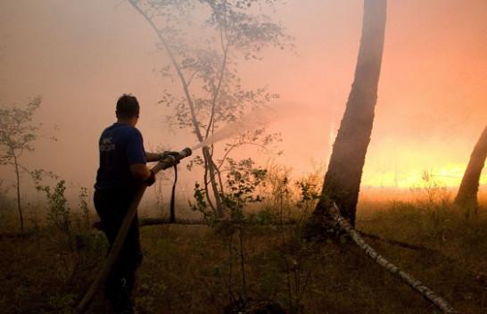 Zjarret djegin 10 mijë kilometra katrorë pyje në Rusi