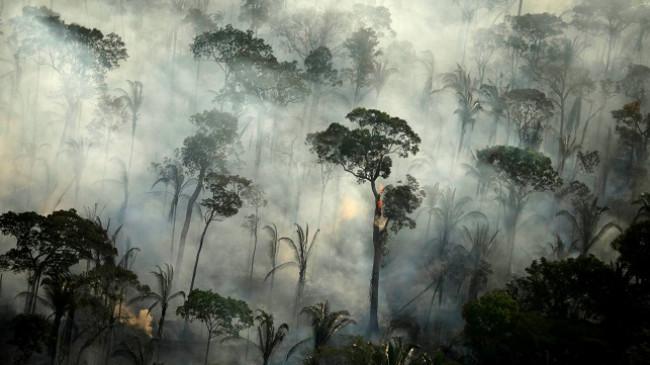 Zjarret në Amazonë shënuan rekord në muajin qershor