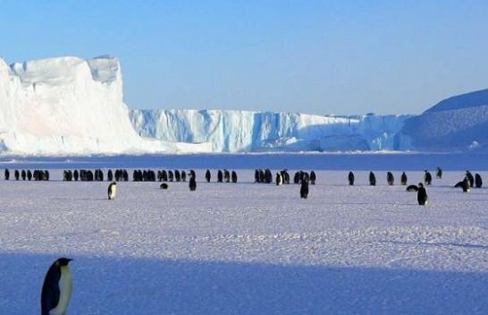 Rrjedhja aktive e metanit në shtratin e detit u zbulua për herë të parë në Antarktidë