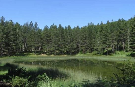 Liqeni i Zi, mrekullia natyrore e Radomirës