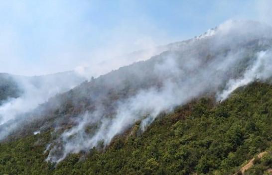 Shqipëria në flakë nga zjarret