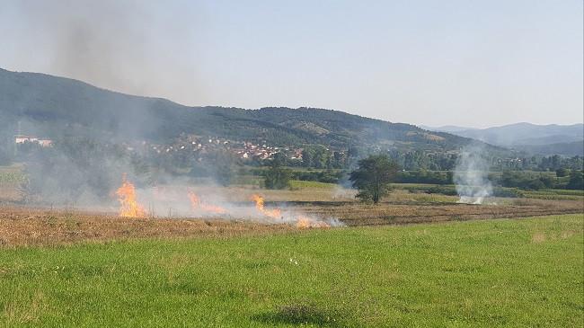 Vazhdon tradita e keqe e djegies së hamulloreve në arat e Kosovës