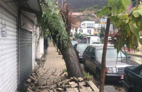 Pasojat e motit të ligë në Bulqizë, rrëzohen disa pemë dhe ndërpritet energjia elektrike [Foto]