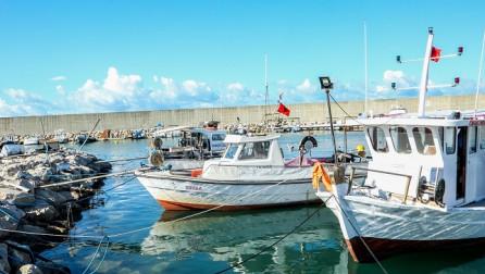 Klosi: Zhvillimi i industrisë së detit, për një Shqipëri më atraktive në fushën e turizmit