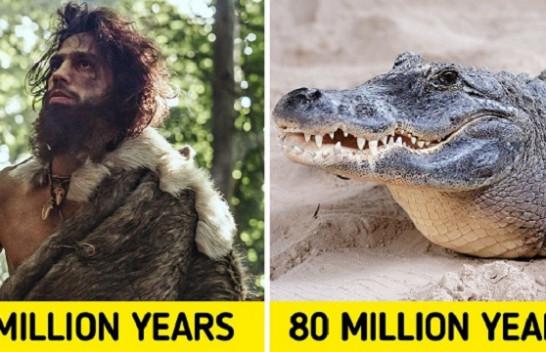 20 kafshët që kanë qenë në tokë më gjatë se njerëzit [Foto]