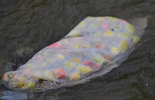 Lumi Llap kontejnerë për hedhjen e mbeturinave