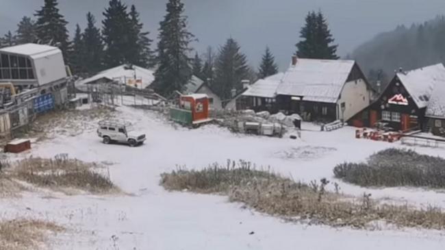 Bie bora e parë në Brezovicë