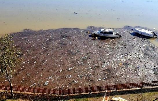 Liqeni i Ulzës në gjendje të tmerrshme, mbeturinat lundrojnë në ujë