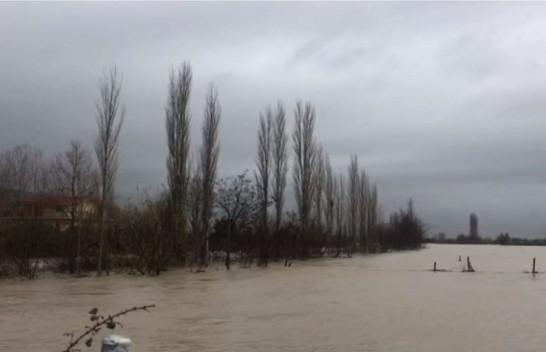 Lumi Vjosa del nga shtrati, përmbytet pazari i kafshëve në Novoselë