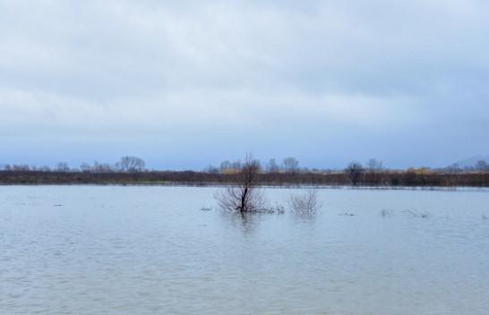Shqipëria nën pushtetin e ujit, përmbyten disa zona [Foto]
