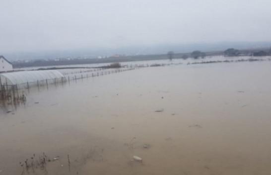 Vërshimet nga reshjet e shiut, Rajoni i Dukagjinit më i prekuri