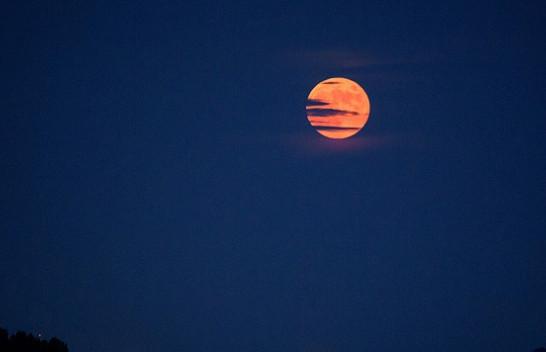 Sonte të gjithë sytë nga qielli, shfaqet 'Hëna Luleshtrydhe'