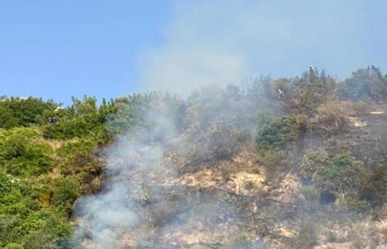 I nxehti afrikan, IGJEUM paralajmëron rrezik të lartë për zjarre në këto qarqe