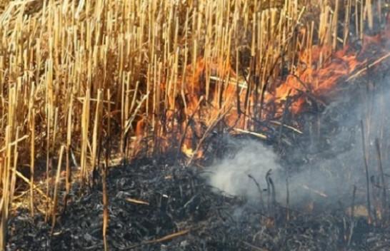 Ministria e Bujqësisë me apel për fermerët: Mos i digjni hamulloret - praktikoni qarkullimin bimor