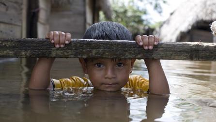 Studim: Fëmijët e lindur në 2021 mund të preken dy herë më shumë nga ndryshimet klimatike